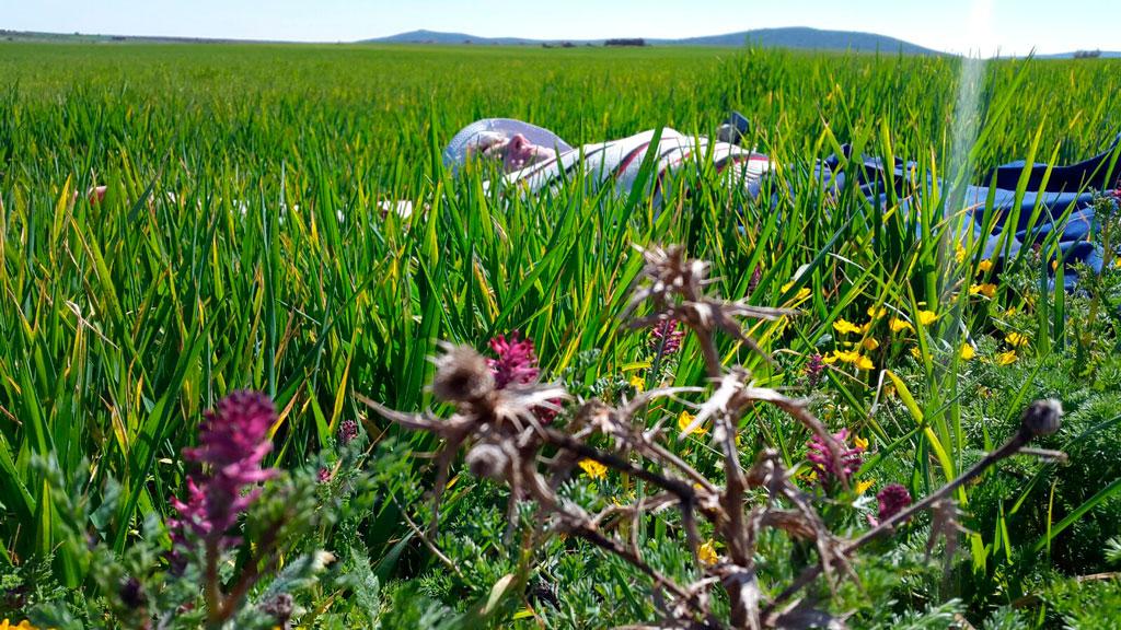 cuidamos-del-suelo-y-de-su-ecologia-en-finca-la-oliveta-de-la-mancha