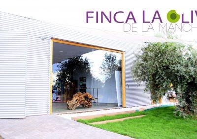 finca-la-oliveta-de-la-mancha_1-oleoturismo