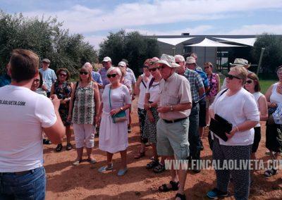 oleoturismo-turismo-del-aceite-finca-la-oliveta-spain_2