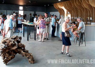 oleoturismo-turismo-del-aceite-finca-la-oliveta-spain_5