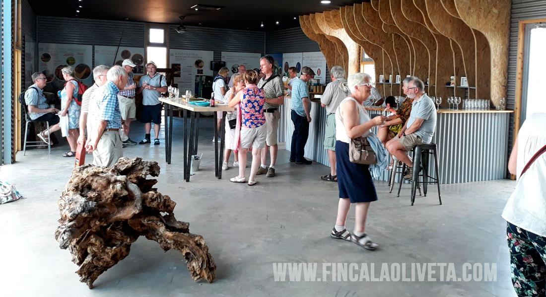 oleoturismo-turismo-del-aceite-finca-la-oliveta-spain