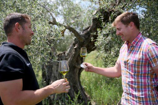 oscar-y-carlos-en-el-olivar-de-finca-la-oliveta-en-mayo-2016