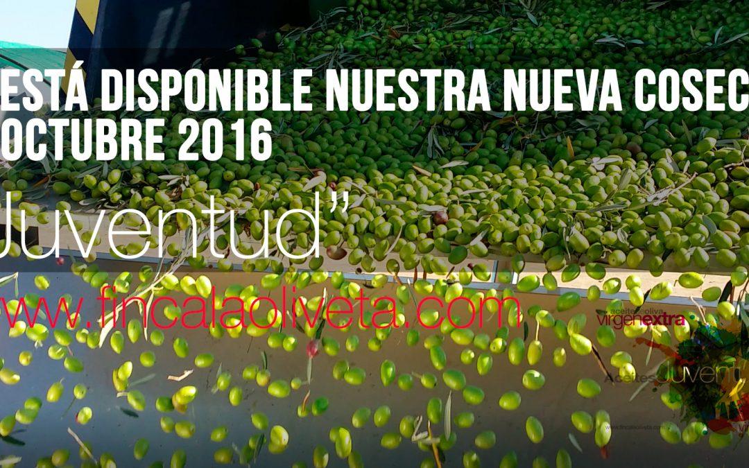 Nueva cosecha octubre 2016 de «Juventud»