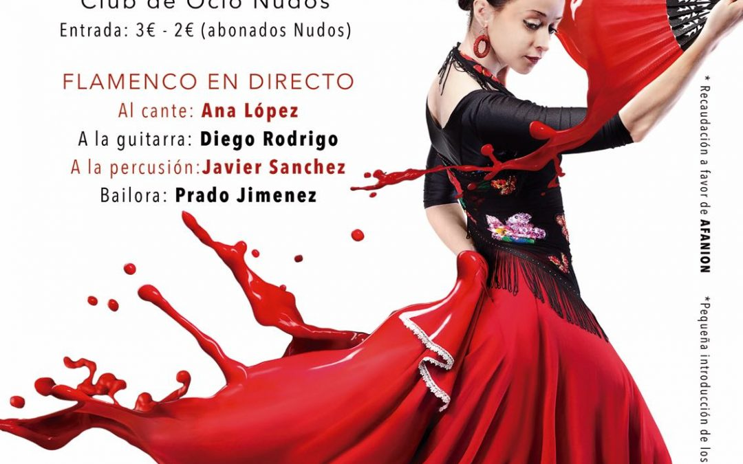 Flamenco y AOVE Juventud por una causa solidaria