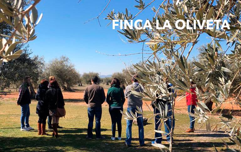 OLEOTURISMO-FINCA-LA-OLIVETA-24-FEBRERO_1