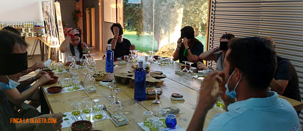 oleoturismo finca la oliveta
